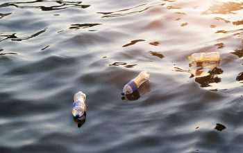 Plastic garbage in the water on sunset